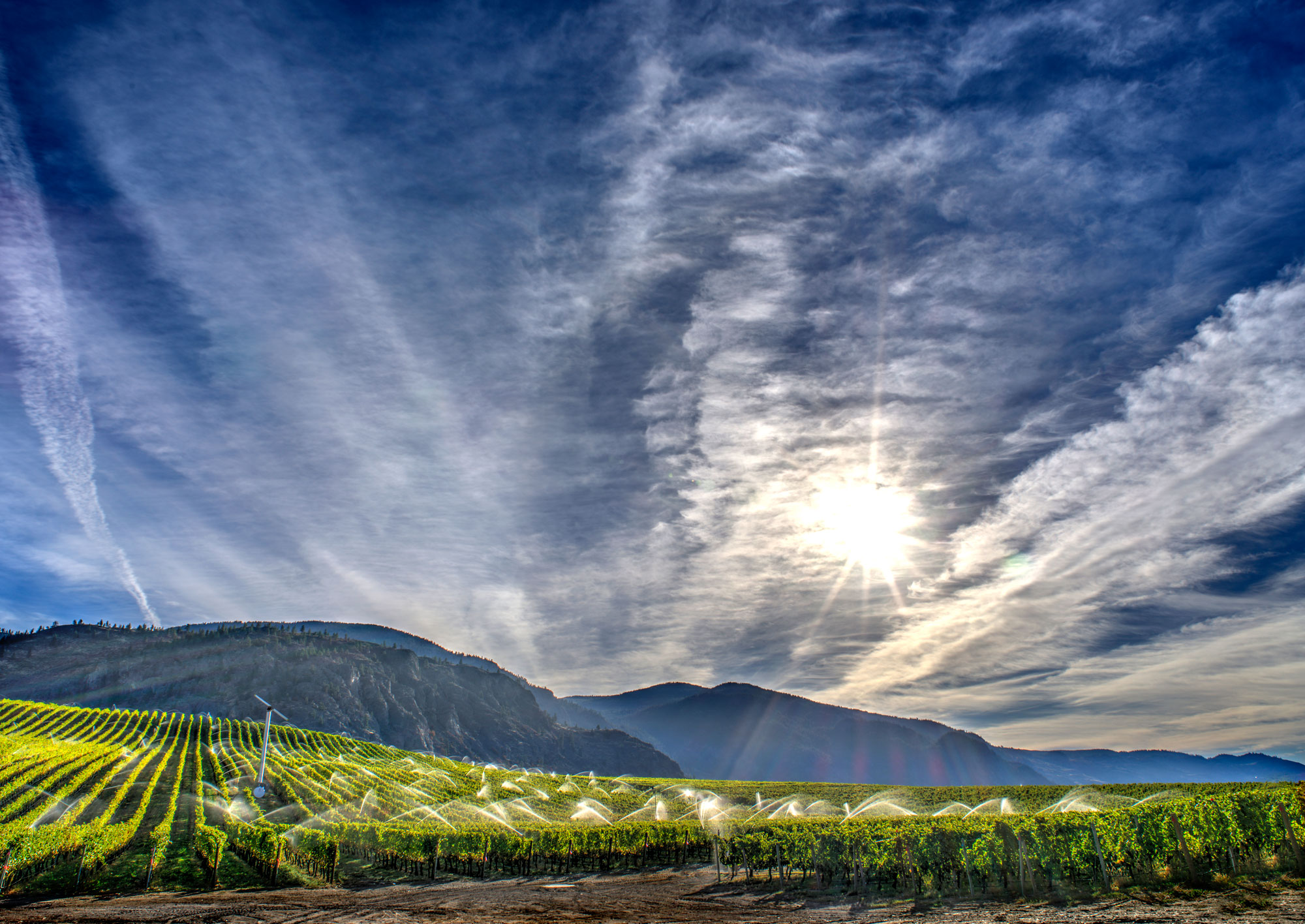 Sunrock Vineyards Okanagan Valley British Columbia